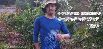 新柄登場! オーガニックコットン7分袖(7分丈)Tシャツ:並木
