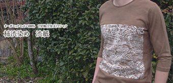 新柄登場!オーガニックコットン7分袖(7分丈)Tシャツ