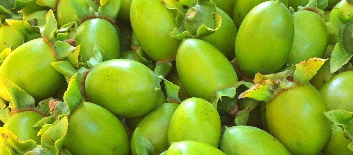 柿渋染の作り方