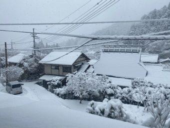 京都大原にも雪が降った